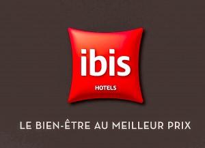 ibis Annecy Centre Vieille Ville-1-3